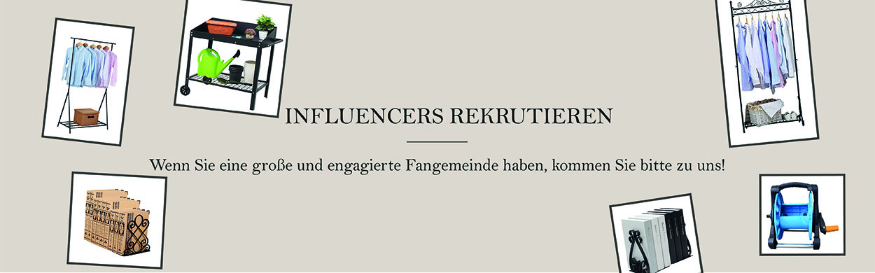 Influencer Section